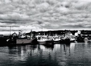 The fleet rests, Howth Harbour, Dublin